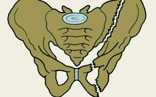 Перелом мальгеня
