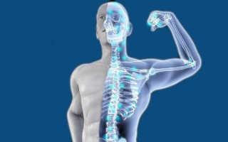 Как ускорить срастание костей и укрепить их после перелома