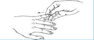 палец