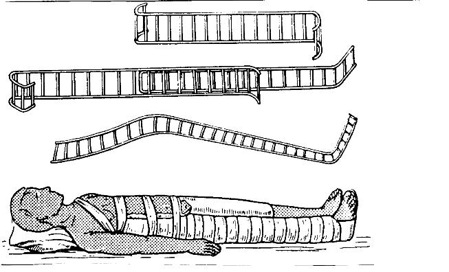 лестничных шин Крамера