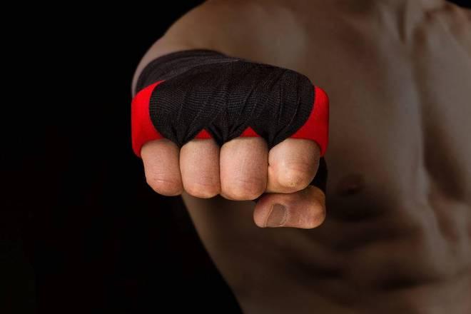 боксеры в группе риска для получения такого типа повреждений